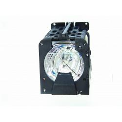 DREAM VISION LIGHTY Genuine Original Projector Lamp 1