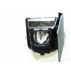 TOSHIBA TDP P5 Genuine Original Projector Lamp 1